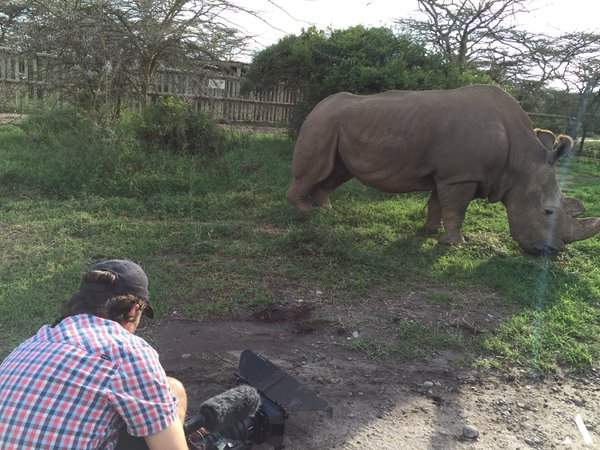 Spending Some Time At Ol Pejeta The