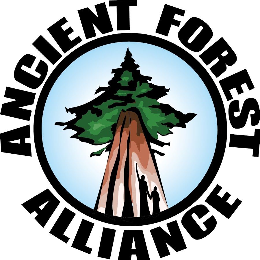 Colour Ancient Forest Alliance logo on white background