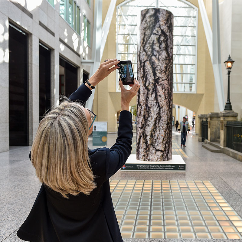 A blonde woman with glasses uses her smartphone to bring a tree called Big Lonely Doug to life in augmented reality