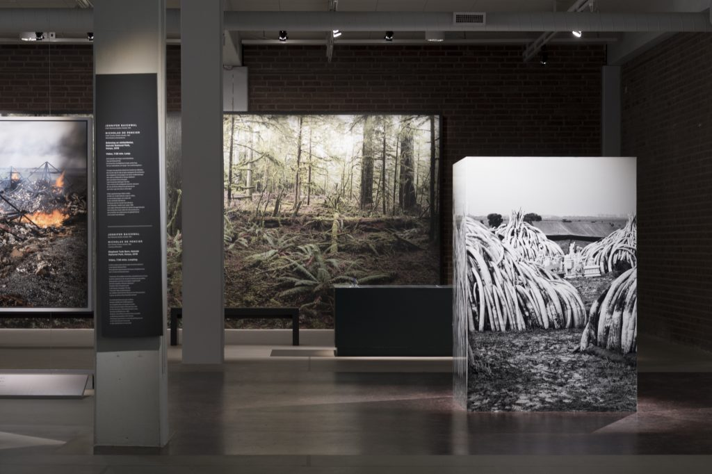 Installation shot of the Anthropocene exhibition at Malmö Museer