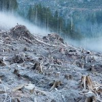 anthropocene-port-renfrew-8